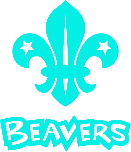 link to beavers